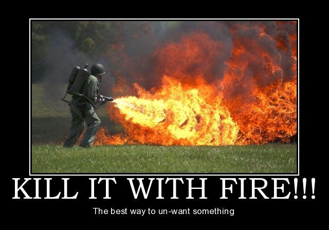 """""""Kill it with fire!"""" The best way to unwant something."""