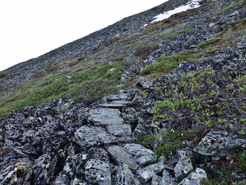 Alaskan wilderness photography Pinnell Mountain trail crosses the flank of Porcupine Dome